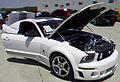 Flickr - jimf0390 - JimF 06-09-12 0011a Mustang car show.jpg