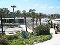 Florida Marineland06.jpg
