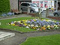 Flower borders in Newtown - geograph.org.uk - 1280558.jpg