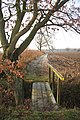 Footbridge and path to Ryece Hall - geograph.org.uk - 1624944.jpg