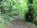 Footpath to Water Bridge - geograph.org.uk - 240040.jpg
