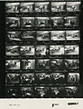 Ford B1080 NLGRF photo contact sheet (1976-08-15)(Gerald Ford Library).jpg