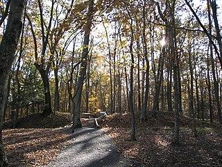 Fort Mill Ridge Wildlife Management Area