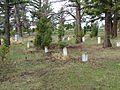 Fort Yellowstone Cemetery Headstones6.JPG