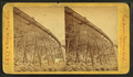 Frankenstein Trestle work. (C) P. & O.R.R, by J.W. & J.S. Moulton.png