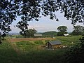 Free-range chickens^, Stoneyhills Farm, Great Warley, Essex - geograph.org.uk - 19140.jpg