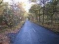 Fulmer, Black Park Road - geograph.org.uk - 614215.jpg