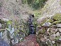 Furusawa, Toyama, Toyama Prefecture 930-0151, Japan - panoramio (17).jpg