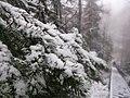 G. Zlatoust, Chelyabinskaya oblast', Russia - panoramio (44).jpg