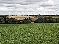GOC Redbourn 011 Fields near Redbourn (23453203434).jpg