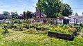 Garden beds, chicken coop and an orchard at Afrika Town garden.jpg
