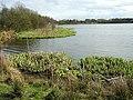 Garnqueen Loch - geograph.org.uk - 153051.jpg