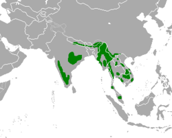 Gaur map.png