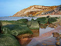 Gay Head clay cliffs of town of Aquinnah with seaweed-covered rocks - Martha's Vineyard, USA.JPG