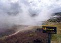 Geothermals NewZealand 2004 SeanMcClean.jpg