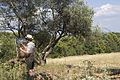 Gerard Byrne Irish artist painting plein air, Provence, July, 2015 1.jpg