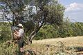 Gerard Byrne Irish artist painting plein air, Provence, July, 2015 1.jpg