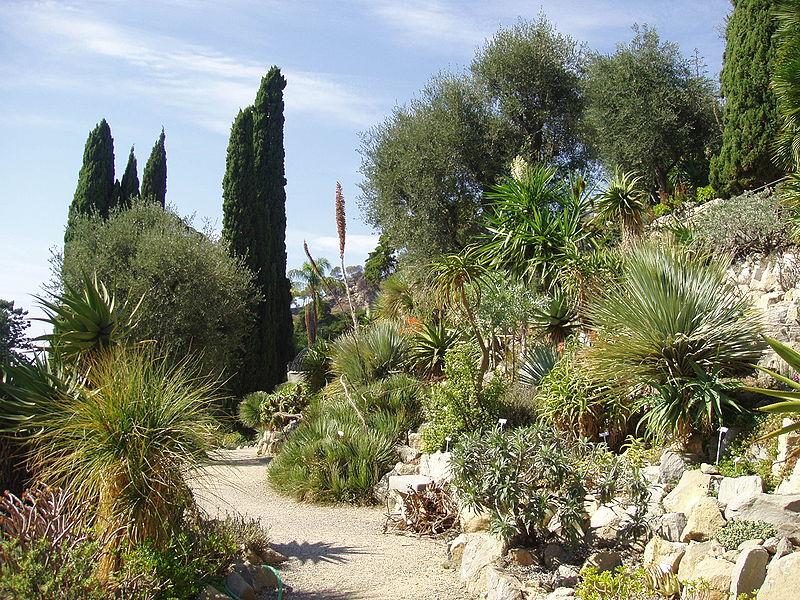 File Giardini Botanici Hanbury General View Jpg Wikipedia