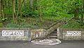 Gipton Wood (3555130868).jpg
