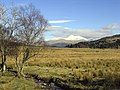 Glen Lonan - looking East - geograph.org.uk - 128582.jpg
