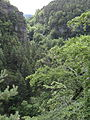 Gorges du Trévezel - CD157 -3.JPG