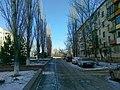 Gorodishche, Volgograd Oblast, Russia - panoramio (21).jpg