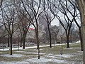 Grant Park, Metra Electric train (4423716961).jpg