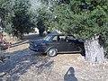 Greek Volvo (210880766).jpg