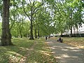 Green Park, London - geograph.org.uk - 1495250.jpg