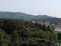 Green vagetation Ngong Hill.jpg