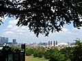 Greenwich Park - geograph.org.uk - 1926532.jpg