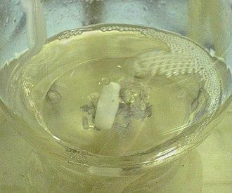 Grignard reagent - Image: Grignard reaction experiment 04