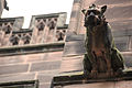 Grotesque on Chester Cathedral 1.jpg