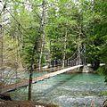 Grove of the Patriarchs Trail bridge - Mount Rainier NP Washington.jpg