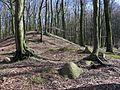 Hügelgrab und Reste eines Megalithgrabes.jpg