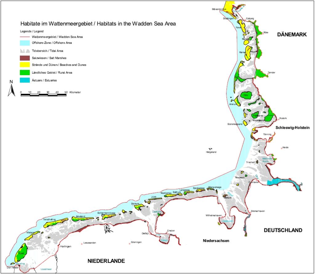 Habitate im Wattenmeer