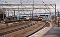 Harringay railway station MMB 19 43315 313043 313063.jpg