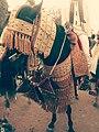 Hausa horse decoration 02.jpg