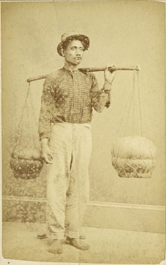 Native cuisine of Hawaii - A Hawaiian poi dealer. Photograph by Menzies Dickson dated to between 1860 and 1870