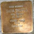 Heidelberg Sara Snopek geb. Isaak.png