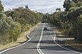 Helensburgh NSW 2508, Australia - panoramio (28).jpg
