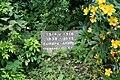 Hidden in the plants - geograph.org.uk - 1429753.jpg