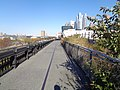 High Line td 94 - West Side.jpg