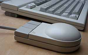Mouse button - Three-button mouse