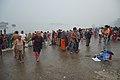 Hindu Devotees Taking Holy Dip In Ganga - Makar Sankranti Observance - Baje Kadamtala Ghat - Kolkata 2018-01-14 6513.JPG