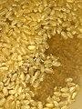 Hk food yellow seeds rice February 2021 SS2 03.jpg
