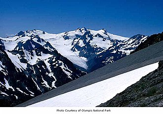 Hoh Glacier - Hoh Glacier as seen from Bailey Range (courtesy National Park Service)