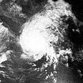 Hurricane Jennifer 1969.JPG