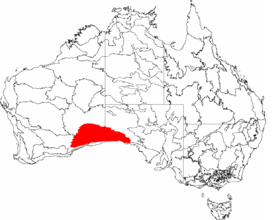 image illustrative de l'article Plaine de Nullarbor