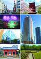 Ichikawa montage.jpg